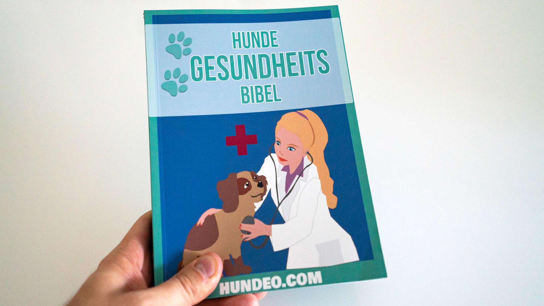 hunde gesundheits bibel 2